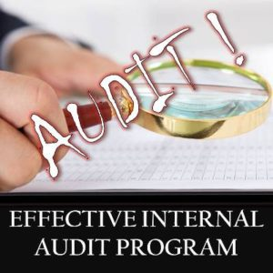 effective-internal-audit-program-susanne-manz
