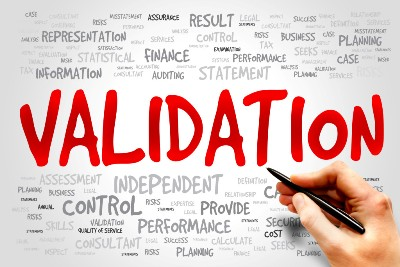 User input validation and the law essay